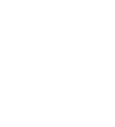 City-of-charles-Surt-w logo